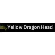 Yellow Dragon Head