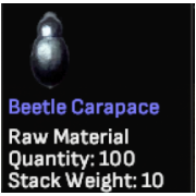 100 Beetle Carapace