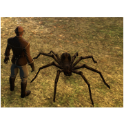 Tamed Pet: Ferocious Wolf Spider