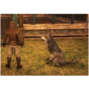 Tamed Pet: Large Grey Wolf