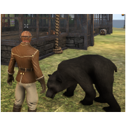 Tamed Pet: Obsidian Bear