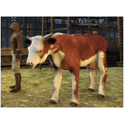 Tamed Pet: Cow